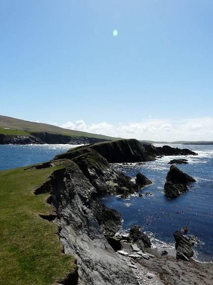shetland 020